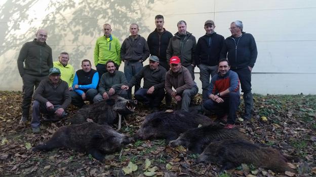 Los cazadores de Ribadesella cerraron la temporada con 108 suidos. :: e. c.