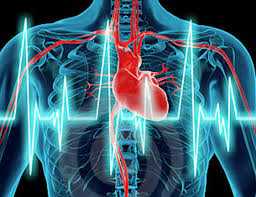 enfermedades-del-corazon